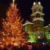 Gwinnett Historic Courthouse Lighting of the Tree
