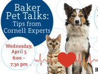 Pet CPR - Baker Pet Talks: Tips from Cornell Experts