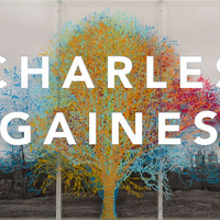 Artist Lecture: Charles Gaines