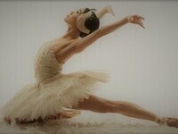 Tchaikovsky's Swan Lake with the Russian Club