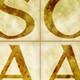 """SCAA Gallery """"Spring Fever"""" Artists' Reception"""