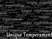 "Senior Art Exhibit: ""Unique Temperament"""