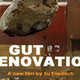 Film: Gut Renovation