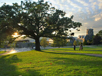 Options for Achieving a Carbon Neutral Campus by 2035
