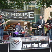 Fred the Bear CD Release