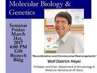 MBG Friday Seminar with Wolf-Dietrich Heyer