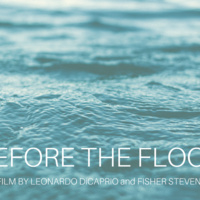 BEFORE THE FLOOD film screening