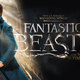 EC Harry Potter Club Presents: Fantastic Beasts and Where to Find Them