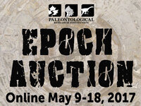 PRI's Epoch Online Auction