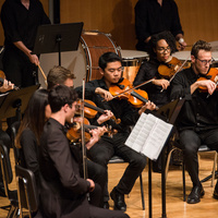 Chamber Orchestra Concert