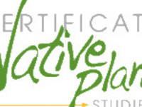 SCNPC Elective Class: Natives at Home with Julie Hill of Southern Wild Landscape Design