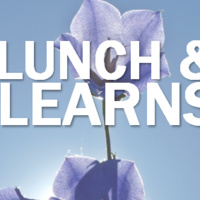 Sustainability Lunch & Learn: Solar & Utilities Work Together