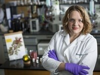 """""""Medical Ethnobotany and the Discovery of New Drugs from Nature"""" - Cassandra Quave"""