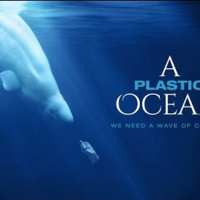 Cinema by the Sea: A Plastic Ocean