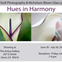 Susan Stoll Photography & Nicholson Blown Glass Show: Hues in Harmony