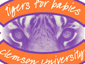 2017 Tigers for Babies 5k