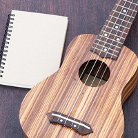 Digital Design Studio: Ukulele