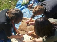 Iowa Archaeology at Louisa County Summer Rec