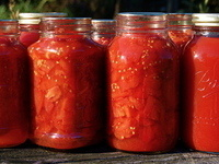 Preserve Tomatoes from the Garden