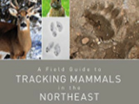 Book Talk: A Field Guide to Tracking Mammals in the Northeast  With Linda Spielman