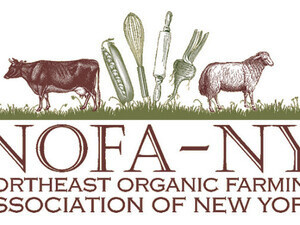 NOFA NY: Celebrating Common Ground: Discovering Weeds, Soil Health, and Diversity at the Goundswell Incubator Farm