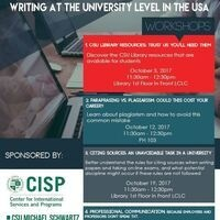 Writing at the University Level in the USA