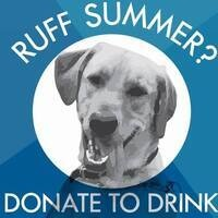 Ruff Summer? Donate to Drink Ft. Camp Companion