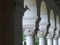 Stories in Stone - An Architectural Tour