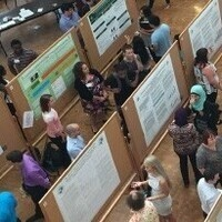 Undergraduate Summer Research Award Poster Session