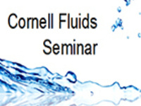 "CFSeminar: Mohammed Alhashim (Cornell University), ""Modeling the effects of fluid transport on the creation of a dense network of activated fractures"""