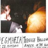 JPEGMAFIA / Teenage Halloween / Fire is Motion / Ameer of the Universe