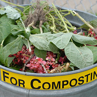 Good Trash Behavior:  Composting