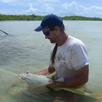 Smalltooth Sawfish in Florida and the Bahamas: Is there hope for this critically endangered species? - Dr. Dean Grubbs, Ph.D - FSU Coastal & Marine Lab
