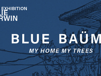 Kylie Corwin: Blue Baüm: My Home, My Trees