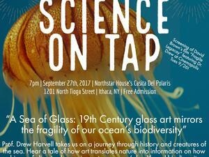 Science on Tap: A Sea of Glass: 19th Century glass art mirrors the fragility of our ocean's biodiversity