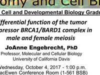 Anatomy and Cell Biology Seminar