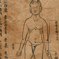 The Transmission of Medical Knowledge along the Silk Road (Public Lecture)