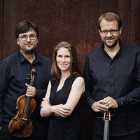 Chamber Music Society:  Morgenstern Trio