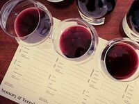 Fall Release Sensory & Terroir Experience @ Forgeron Cellars