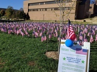 Heroes' Field - Veterans Day Commemoration