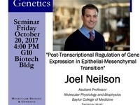 "MBG Friday Seminar with Joel Neilson ""Post-Transcriptional Regulation of Gene Expression in Epithelial-Mesenchymal Transition"""