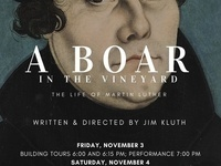 A Board in the Vineyard: The Life of Martin Luther