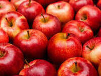 Applepalooza: Apple Flavored Snacks with House Council