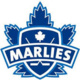 Toronto Marlies vs Laval Rockets