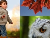 Fall into Science - Workshop Series @ Children's Museum of Walla Walla
