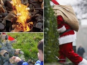 S'mores with Santa