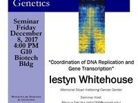 "Friday Seminar with Iestyn Whitehouse ""Coordination of DNA Replication and Gene Transcription"""