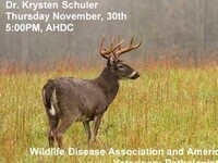 White-tailed deer Necropsy and Chronic Wasting Disease/Brainworm Lecture