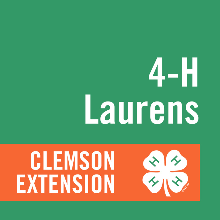 Laurens County 4-H Spirit Award and Volunteer of the Year Award Nomination Deadline