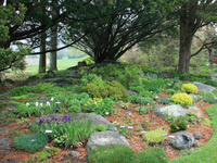 Preview of Cornell Plantations' New Gardens